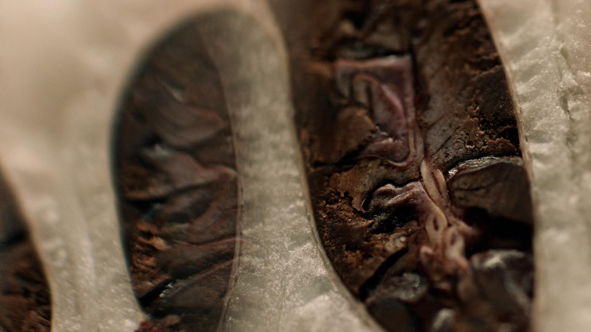 portfolio/theartofchocolate/chocolate_jorrit-stollman_04.jpg